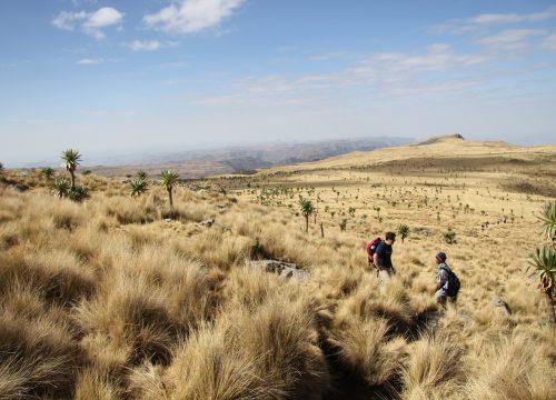 Éthiopie : top 4 des lieux incontournables à visiter lors du voyage